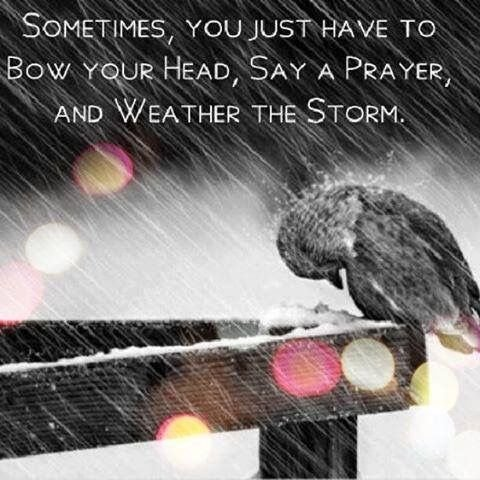 Heads Bowed In Silent Prayer To Fish >> Sometimes You Just Have To Bow Your Head Say A Prayer And Weather
